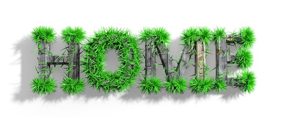 Wooden Home word with green grass growth isolated