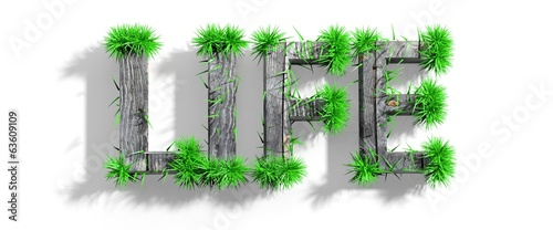 Wooden Life word with green grass growth isolated