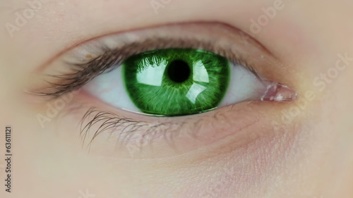 Multicolored Contact Lenses. Seamless Loop