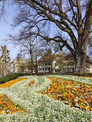 Bern, spring