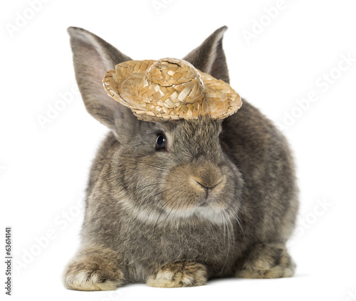 Rabbit wearing a straw hat, isolated on white