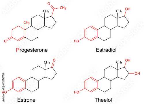 Structural formulas of female sex hormones with marked fragments