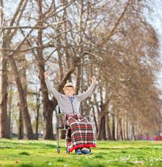 Senior in wheelchair gesturing happiness in park