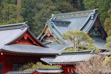 日本の寺の屋根
