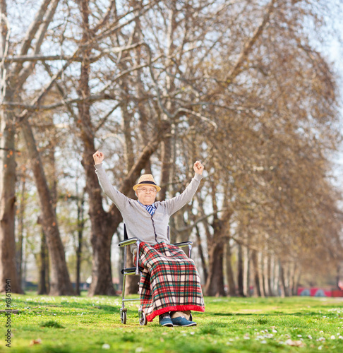 Senior in wheelchair gesturing happiness in park