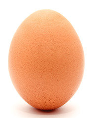 Brown chicken egg isolated on a white background