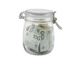 Polish money  in a glass jar with clipping path