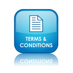 TERMS AND CONDITIONS Web Button (legal use contract information)