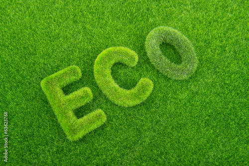 Letters on the green grass background. Eco concept