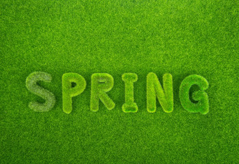 Spring word made from grass