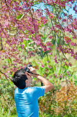 A man with camera in the Wild Himalayan Cherry