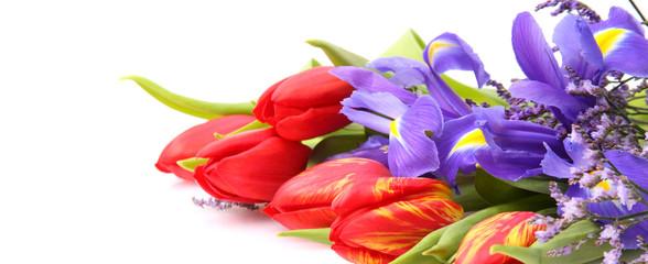 Tulpen und Iris