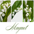 canvas print picture - composition Muguet
