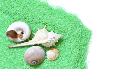 bright green  bath salt and seashells