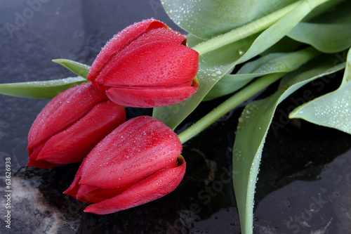 Red tulips on black marble background