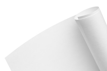 Roll of blank paper on a white background