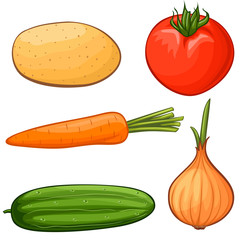 Vector cartoon vegetables