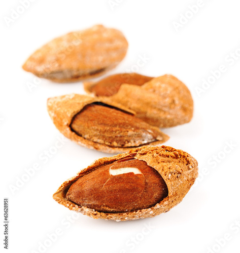 Seed of almonds