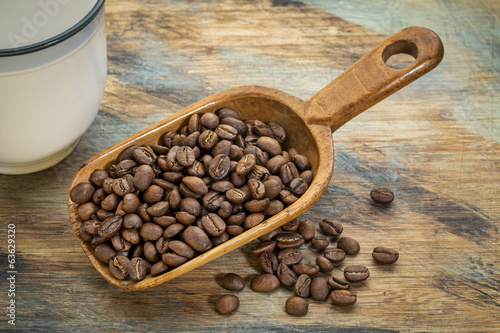scoop of coffee beans