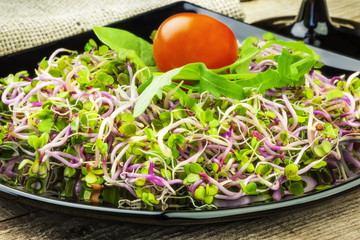 Tasty chinise rose sprouts on black plate
