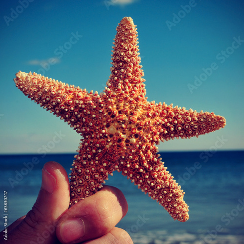 starfish on the beach, with a retro effect