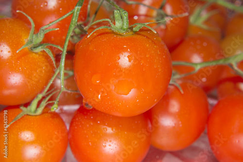 Photo of very fresh Cherry tomatoes on branch