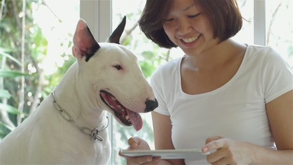 Asian woman and bull terrier dog using tablet computer