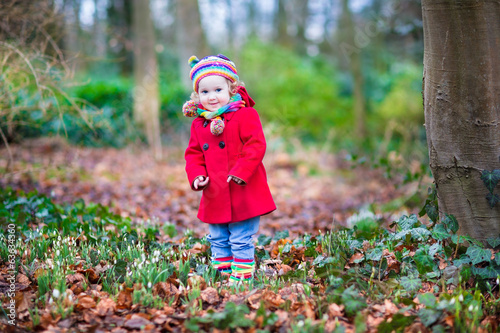 Adorable toddler girl playing with first snowdrop flowers