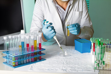 doctor pipetting sample for study in petri dish