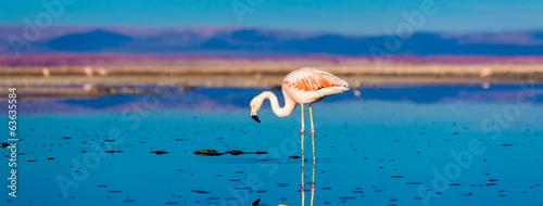 Leinwandbild Motiv Atacama Desert in Chile, South America