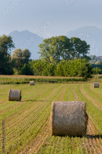 Hay rolls and mountains background