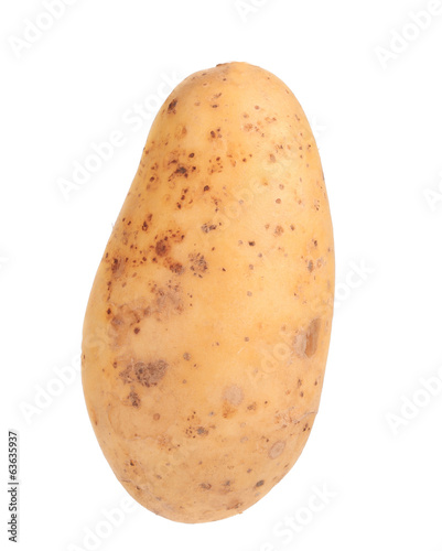 Raw potato on white background.