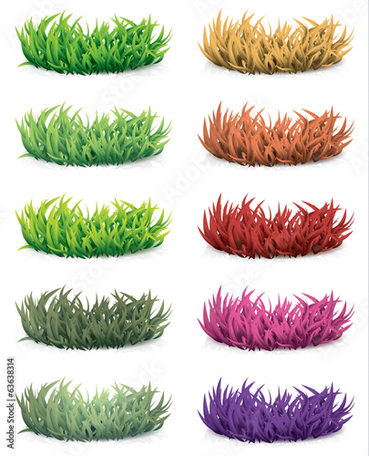 Grass with different color
