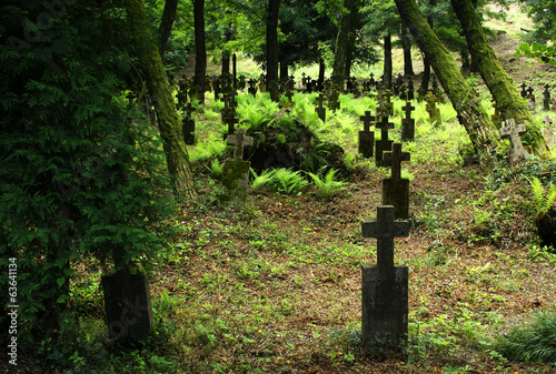 Old 19th century graveyard in Transcarpathian region
