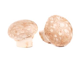 Brown champignon mushrooms.