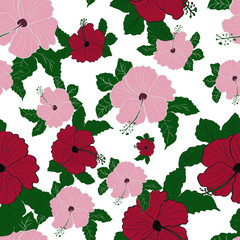 Vector flower pink hibiscus seamless pattern