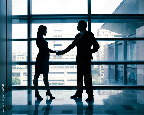successful business woman and man handshaking