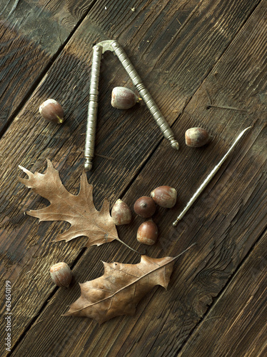 Still life of acorns.