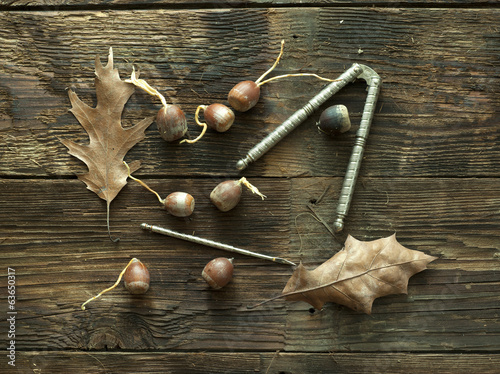 Acorns on weathered wood.