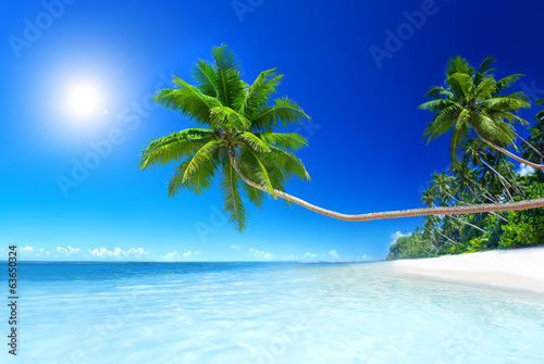 Scenic View of the Sea Shore with White Sand