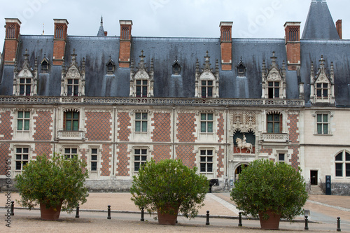 Castle of Blois.  the Gothic wing of Louis XII. Loire Valley,