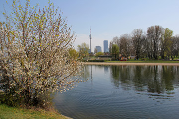 Skyline Wien im Frühjahr