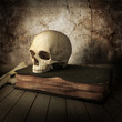 ancient skull with book