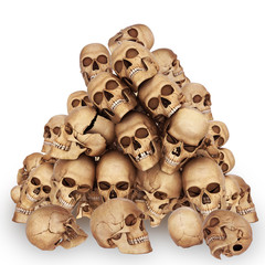 skulls are stayed on one another