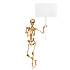 human skeleton with sign