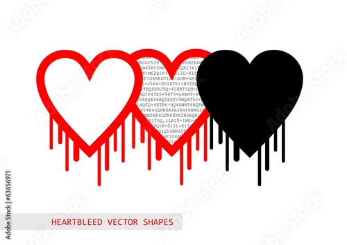 Heartbleed openssl bug vector shape