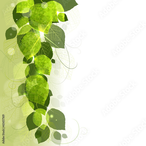 floral background of leaves