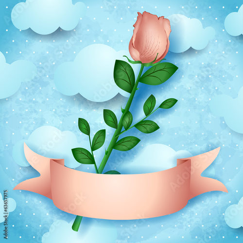 Pink rose on sky background