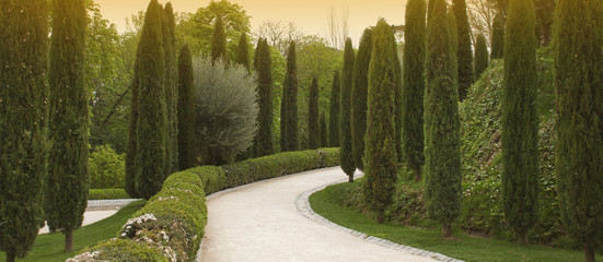 Footpath in a garden with cypresses