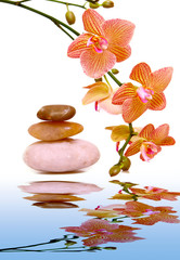 Massage stones and yellow orchid.